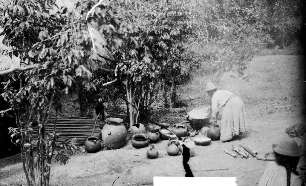 storia-birra-al-mais